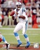 Cam Newton LIMITED STOCK Carolina Panthers 8X10 Photo