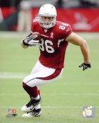 Todd Heap Arizona Cardinals 8X10 Photo