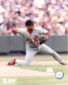 Placido Polanco LIMITED STOCK St. Louis Cardinals 8X10 Photo