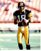 Mike Tomczak LIMITED STOCK Pittsburgh Steelers 8x10 Photo