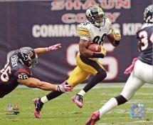 Emmanuel Sanders Pittsburgh Steelers 8x10 Photo