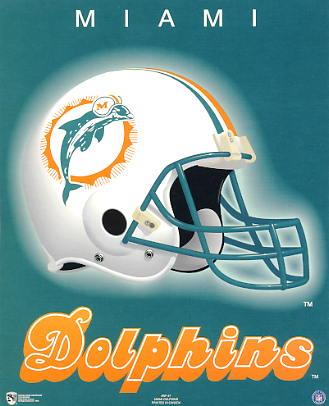 Miami A1 Miami Dolphins Team Helmet Paper Stock SUPER SALE 8x10 Photo