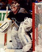 Tom Barrasso LIMITED STOCK Pittsburgh Penguins 8x10 Photo