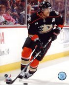 Teemu Selanne LIMITED STOCK Mighty Ducks 8x10 Photo