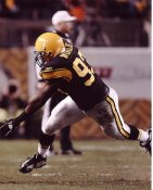 Jason Worilds Pittsburgh Steelers 8x10 Photo