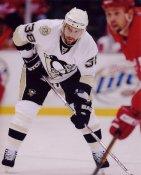 Jeff Taffe LIMITED STOCK Penguins 8x10 Photo