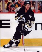 Andre Roy LIMITED STOCK Penguins 8x10 Photo