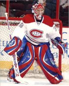 Cristobal Huet LIMITED STOCK Canadiens 8x10 Photo