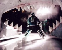 Evgeni Nabokov LIMITED STOCK Sharks 8x10 Photo