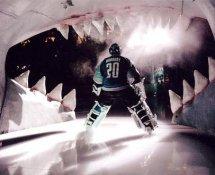 Evgeni Nabokov LIMITED STOCK Sharks 8x10 Photo