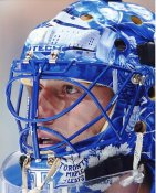Andrew Raycroft LIMITED STOCK Maple Leafs 8x10 Photo
