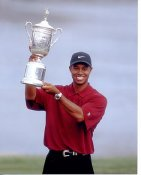 Tiger Woods LIMITED STOCK 8X10 Photo