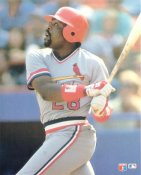 Pedro Guerrero LIMITED STOCK Glossy Card Stock St. Louis Cardinals 8X10 Photo