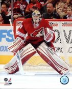 Mike Smith Phoenix Coyotes 8x10 Photo
