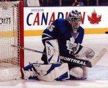 Vesa Toskala LIMITED STOCK Maple Leafs 8x10 Photo