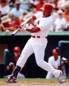 Carlos Beltran LIMITED STOCK St. Louis Cardinals SATIN 8X10 Photo
