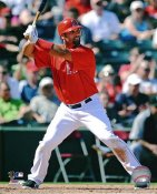 Albert Pujols Anaheim Angels 8X10 Photos