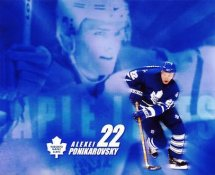 Alexei Ponikarovsky LIMITED STOCK Toronto Maple Leafs 8x10 Photo