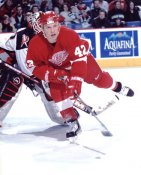 Sean Avery LIMITED STOCK Detroit Red Wings 8x10 Photo