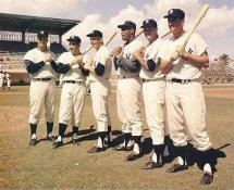 Mickey Mantle, Roger Maris, Yogi Berra, Elston Howard, Bill Skowron & Johnny Blanchard All Players Had 20 or More Home Runs 1961  SUPER SALE Glossy Cardboard Stock New York Yankees 8x10 Photo LIMITED STOCK