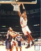 Scottie Pippen Chicago Bulls LIMITED STOCK 8X10 Photo