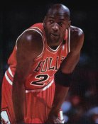 Michael Jordan SUPER SALE Glossy Card Stock Chicago Bulls 11X14 Photo