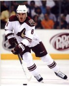 Brendan Bell LIMITED STOCK Phoenix Coyotes 8x10 Photo