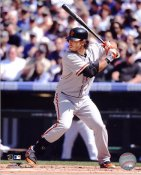 Brandon Crawford San Francisco Giants 8X10 Photo