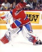 Jaroslav Halak LIMITED STOCK Montreal Canadiens 8x10 Photo