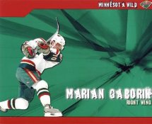 Marian Gaborik LIMITED STOCK Minnesota Wild 8x10 Photo