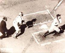 Babe Ruth SUPER SALE New York Yankees 8X10 Photo