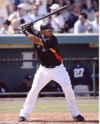 Ronnie Paulino Pittsburgh Pirates 8X10 Photo