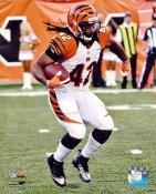 BenJarvis Green-Ellis Cincinnati Bengals 8X10 Photo