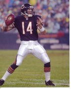 Brian Griese LIMITED STOCK Chicago Bears 8X10 Photo