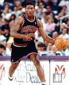 Ron Artest LIMITED STOCK Chicago Bulls 8X10 Photo
