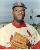 Bob Gibson LIMITED STOCK St. Louis Cardinals 8X10 Photo