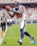 Andre Johnson Houston Texans 8X10 Photo