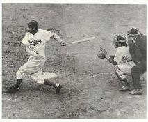 Cookie Lavagetto LIMITED STOCK Brooklyn Dodgers 8x10 Photo