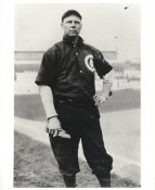 Mordecai Brown LIMITED STOCK Chicago Cubs 8x10 Photo