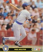 Paul Molitor LIMITED STOCK Milwaukee Brewers Glossy Card Stock 8X10 Photo