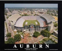 A1 Jordan-Hare Stadium Aerial Auburn Alabama LIMITED STOCK 8x10 Photo