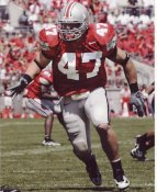 AJ Hawk Ohio State University 8X10 Photo