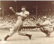 Joe Dimaggio LIMITED STOCK NY Yankees 8X10 Photo