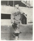 Unknown Vintage Baseball Player LIMITED STOCK Buffalo Bisons 8X10 Photo