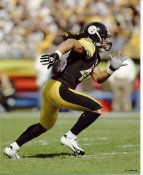 Troy Polamalu LIMITED STOCK Pittsburgh Steelers 8x10 Photo