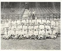 Boston Red Sox LIMITED STOCK Vintage Baseball Team Photo 8X10 Photo