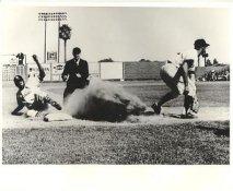 St. Louis Cardinals LIMITED STOCK Vintage Baseball Team Photo 8X10 Photo