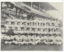 Washington Senators LIMITED STOCK Vintage Baseball Team Photo 8X10 Photo