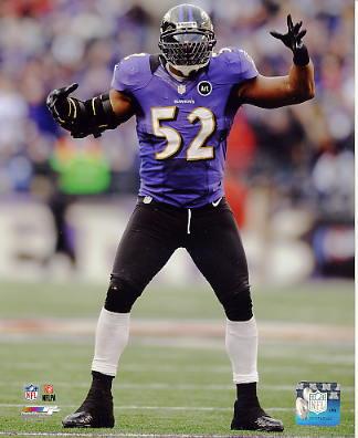 Ray Lewis Baltimore Ravens SATIN 8X10 Photo
