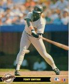 Tony Gwynn San Diego Padres LIMITED STOCK Glossy Card Stock 8X10 Photo